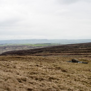 Moorland near West Nab
