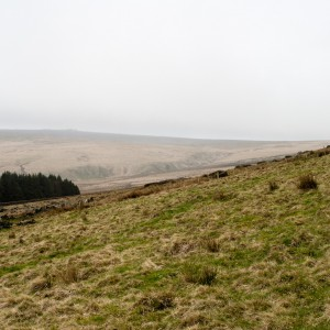 Moorland near Withens Clough reservoir 5
