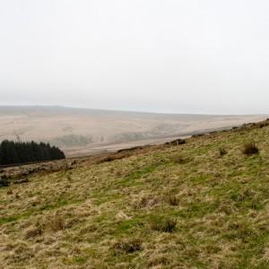 Moorland near Withens Clough reservoir 5