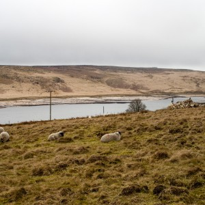 Withens Clough reservoir 1