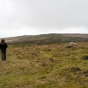Moorland near Withens Clough reservoir 1