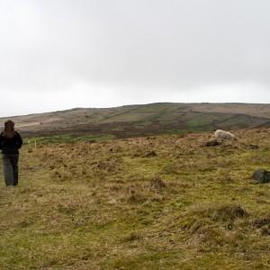 Moorland near Withens Clough reservoir 1