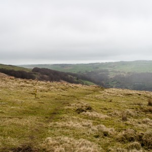 Moorland near Withens Clough reservoir 2