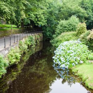 River Colne, Marsden 1