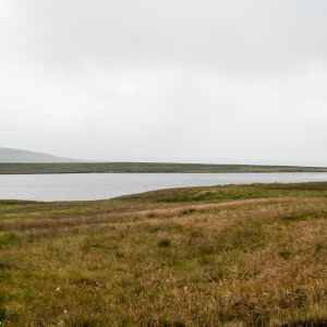 Pule Hill and Swellands Reservoir from the Pennine Way