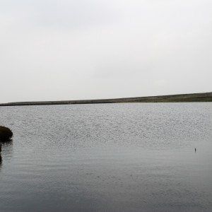 Black Moss Reservoir 1