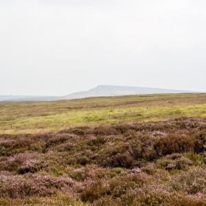 Moorland near the Pennine Way 1