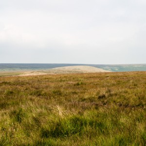 Moorland near the Pennine Way 14