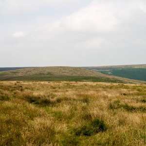 Moorland near March Haigh Reservoir 1